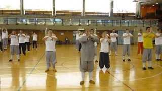 Xiao Luohan - Gran Maestro Shi De Yang en Madrid, Mayo 2013 - Shaolin Kung fu