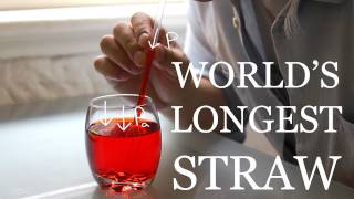 World's Longest Vertical Straw