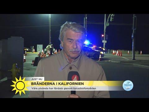 """Bränderna i Kalifornien: """"Vi har sett helt ödelagda byar"""" - Nyhetsmorgon (TV4)"""
