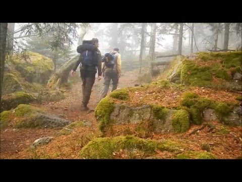 Walking series: Vosges France - Hiking Taennchels Mystical F