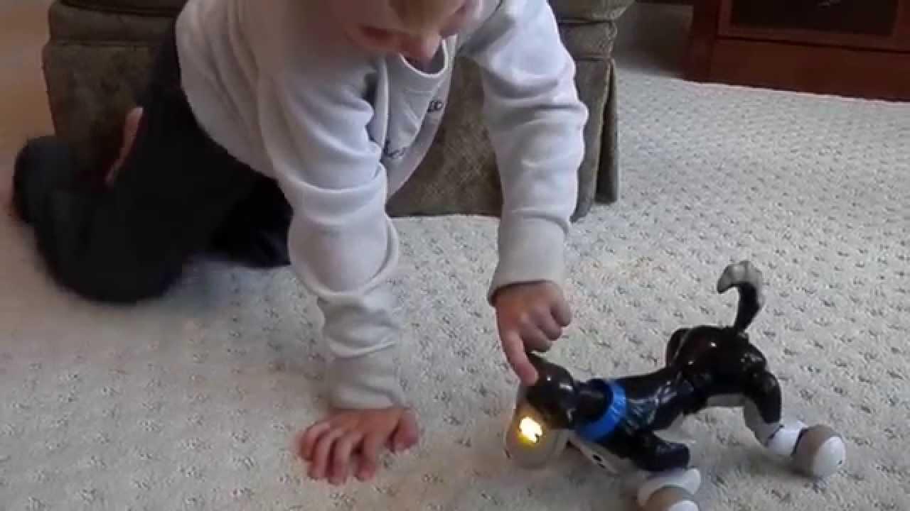 Toy Robots - Zoomer Robot Dog