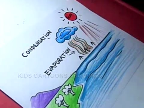 How does rain form and what is the water cycle drawing for kids also rh youtube
