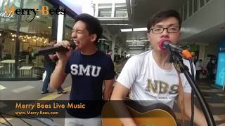 Merry Bees Live Music - The Unemployed performing 'Dive' by Ed Sheeran