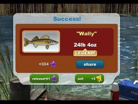Hooking Wally!