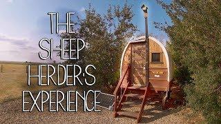 Sheep Wagon   Gypsy Caravan   Shepherds Hut