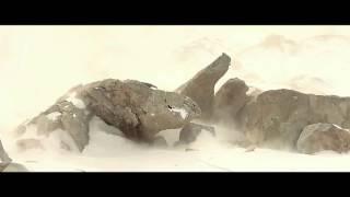 видео Академия военных наук подвела итоги за 2011 год