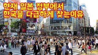 현재-일본-정부에서-한국을-다급하게-찾는이유
