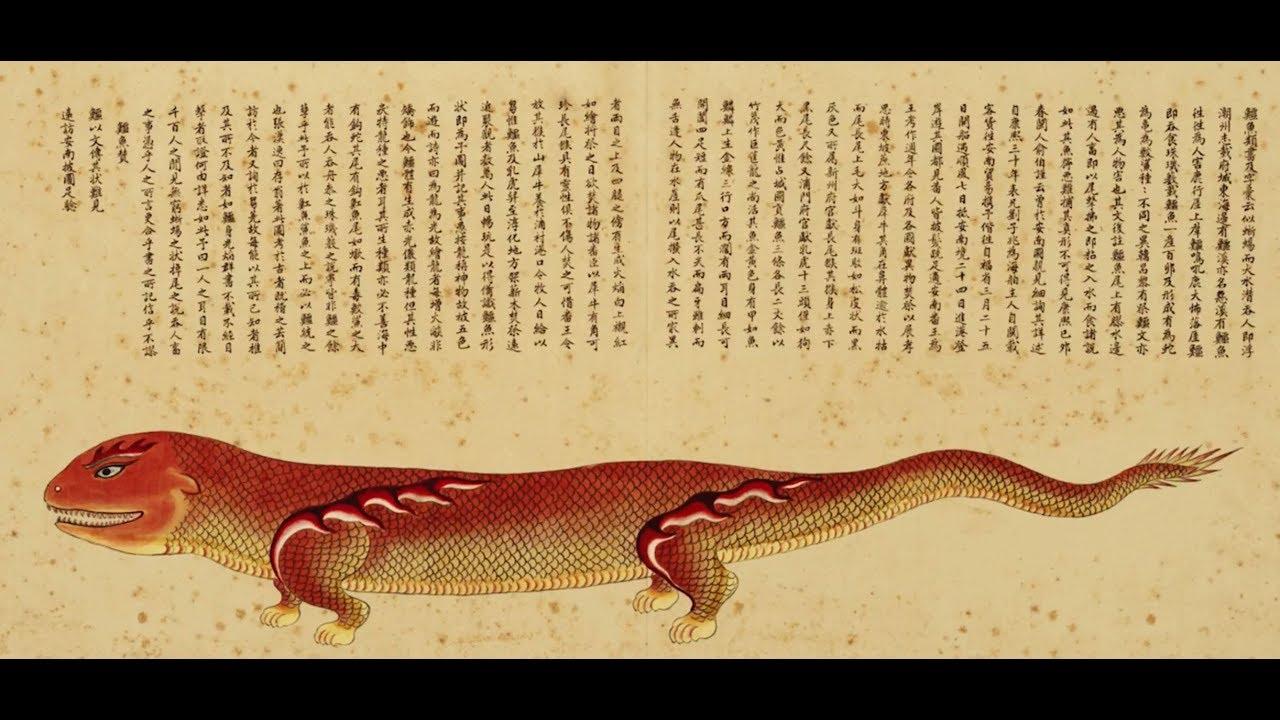 【一席】張辰亮:海錯圖筆記 - YouTube