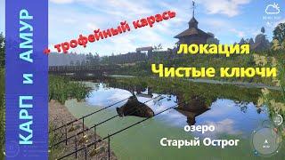 Русская рыбалка 4 Карп амур и трофейный карась
