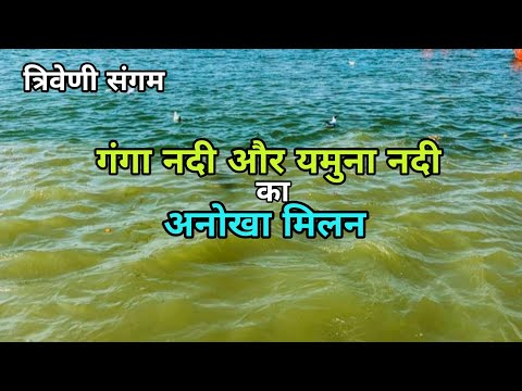 Triveni Sangam   त्रिवेणी संगम   Sangam Prayagraj