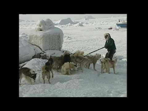 Illoqarfik Uummannaq, 2003