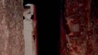 The Scarletti Curse Christine Feehan Book Trailer