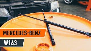 Sådan udskifter du bagklappens gasfjeder bagklap på MERCEDES-BENZ M W163 [GUIDE]