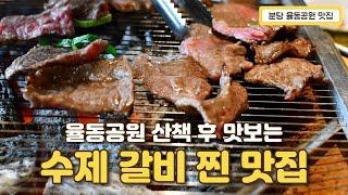 분당 율동공원 맛집 수제갈비 전문점 화동생갈비