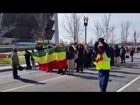 Protest for Ethiopia (02/08/2016)