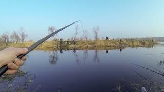 Рыбалка Маяки - Днестр. 29 марта 2018 год.