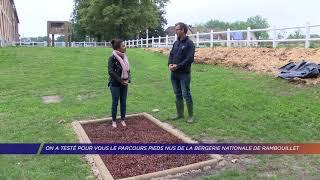 Yvelines | On a testé pour vous le parcours pieds nus de la bergerie nationale de Rambouillet