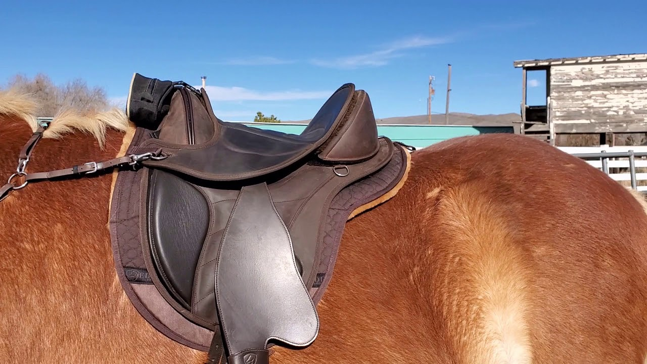 EDIX Saddles Continuous Fitting