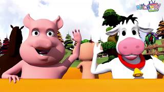 Animals Songs Compilation | Animal Songs Collection | Kachy TV Nursery Rhymes - Kids Songs