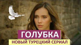 Голубка / Guvercin (1 сезон) ВСЕ СЕРИИ СМОТРЕТЬ (2019)