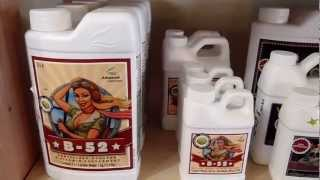 Advanced Nutrients @ Here We Grow - Hadley, MA Hydroponic Store (413) 584-FARM