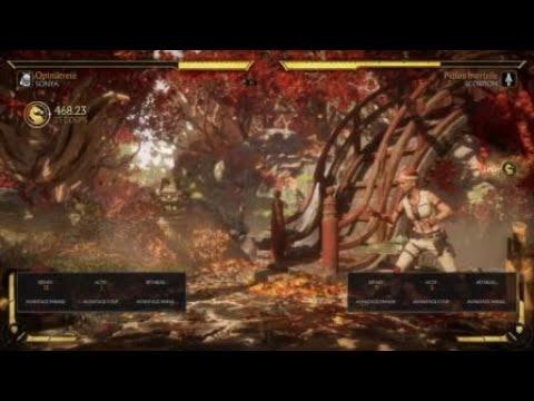 Nesica sur PC Test : P4AU 1 02 et Chaos Code New Sign of