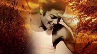 MICHAEL JACKSON- YOU ARE THE WIND BENEATH MY WINGS