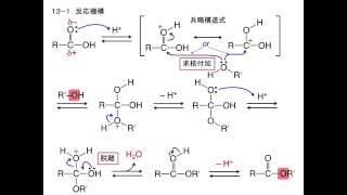 Fischerのエステル化(アプリ『有機化学 基本の反応機構』より)
