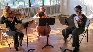 Glow Worm String Trio, City Six Strings