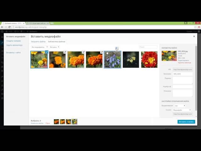 Easy FancyBox - бесплатная и легкая галерея Wordpress с эффектом Lightbox