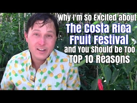 Why I'm So Excited about the Costa Rica Fruit Festival & You