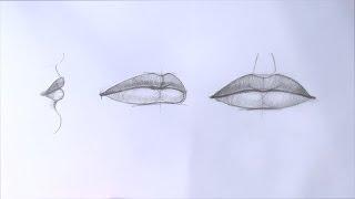 Уроки рисования. Как нарисовать губы карандашом(Как нарисовать губы ▻ Скачайте видео урок