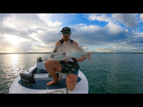 Moreton Bay Snapper II, Trial And Error