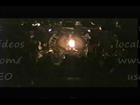 CANVAS (Austin) White Rabbit FV3 VIDEO