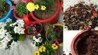 आप भी कर ले अपनी बालकनी गार्डन में यह जरूरी काम अब,anvesha,s creativity