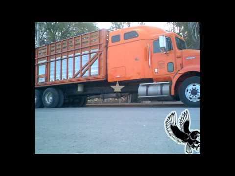 camiones torton en mexico10