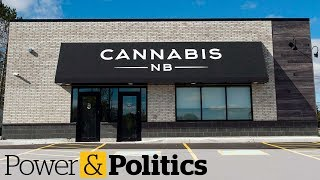 Are provinces to blame for pot industry39s woes  Power amp Politics