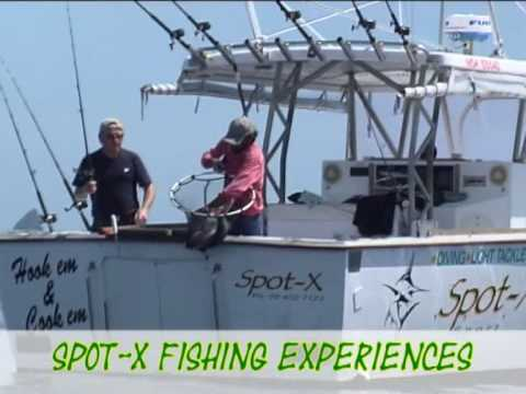 Bay of Islands Fishing charters, Fishing trips from Paihia and Russell, catch fish with Spot X