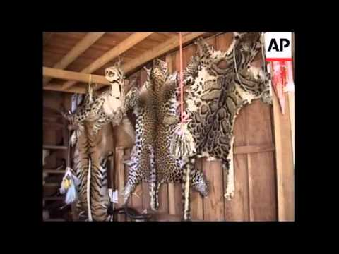 Thailand: WWF: Campaign to halt the trade in wildlife souvenirs