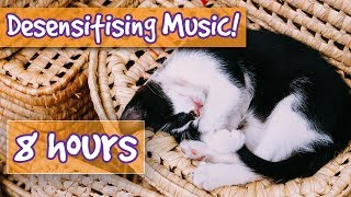 Desensitising Cat Music! Music with Sound Effects to Desensitise Cats to Noises, Help Anxious Cats😸