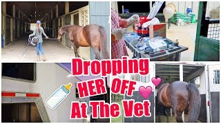 Dropping Her Off To Have A Baby! | My Pregnant Horse Pt. 9