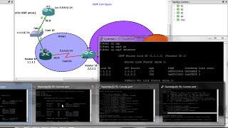 ospf lsa types step by step