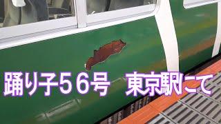 185系 特急踊り子56号 東京到着