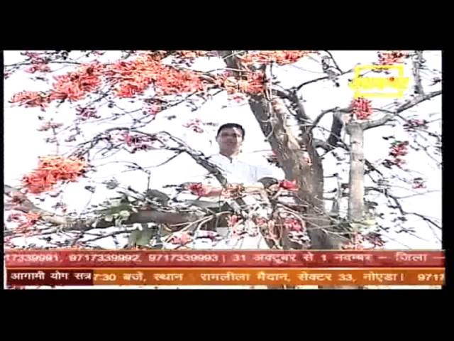 Medical use of ????  or Flame of the Forest by Acharya Balkrishna