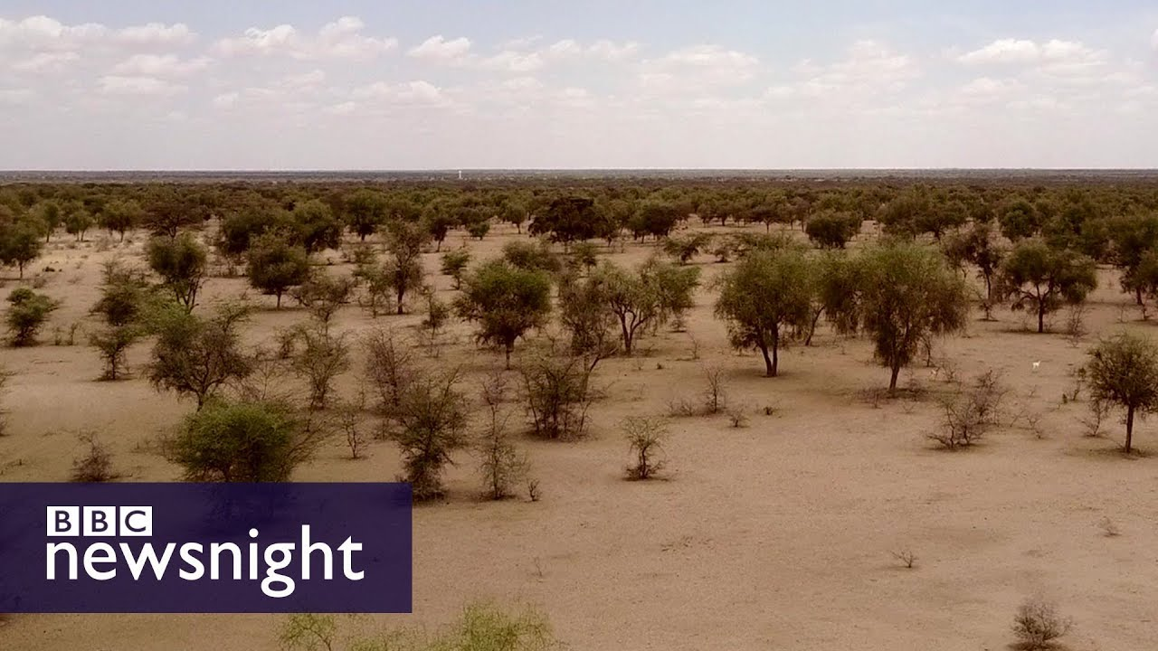 Watch: Great Green Wall
