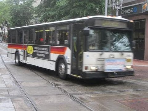 Buses in Portland, OR (Volume One)