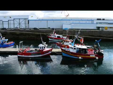 Small Fishing Boats In Brest Harbour