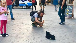 ВЛОГ Гуляем по Стамбулу! Почему так много кошек ?