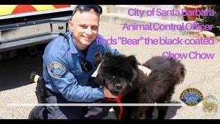 SBPD Animal Control Officer Finds