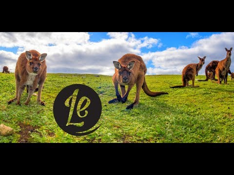 welcome-to-kangaroo-island-|-luxury-escapes